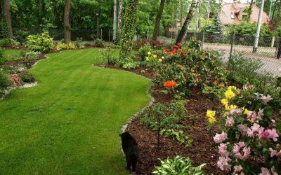Wiosenna pielęgnacja trawnika