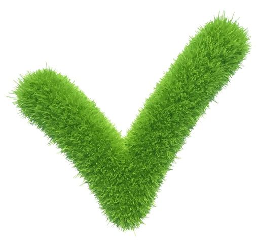 Jaki rodzaj trawnika wybrać?