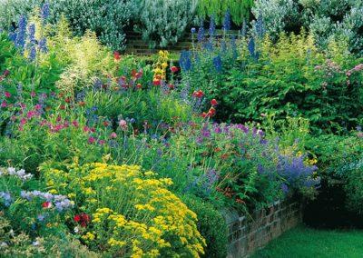 2w1 – nawozi rośliny i polepsza glebę