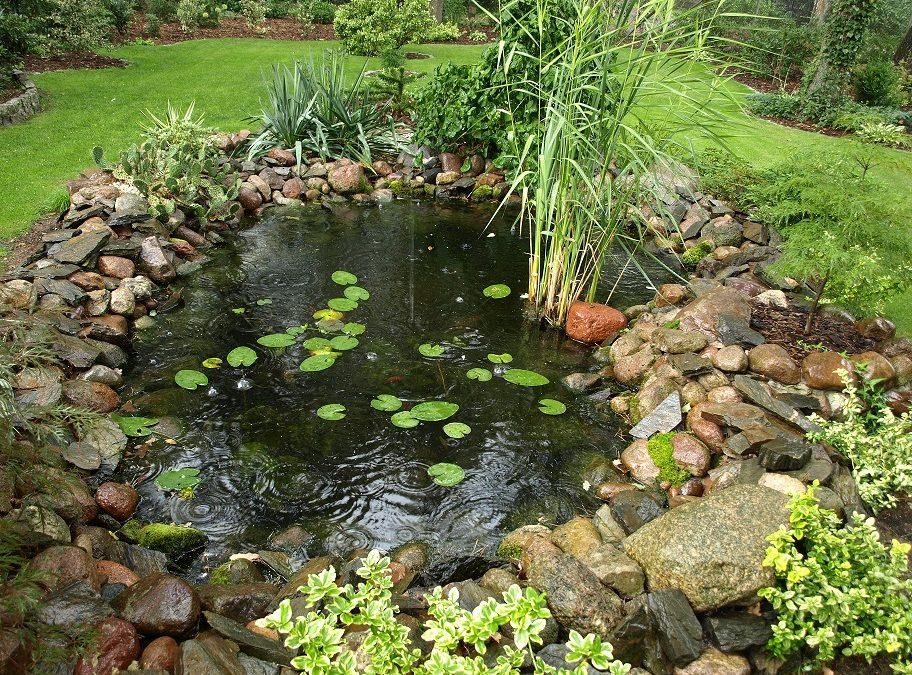 Kamień i woda w ogrodzie